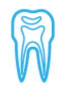 Juureravi (endodontia)